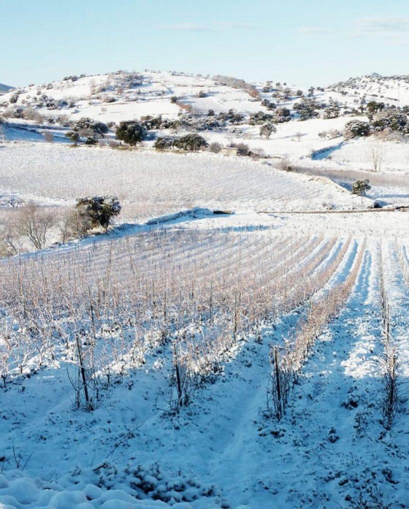 Cantina Gaia Mamoiada imbiancata dalla neve Gennaio 2019